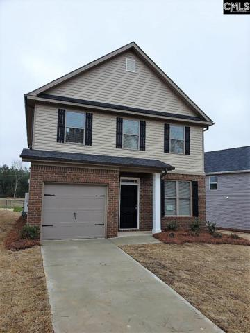 243 Bickley View Court, Chapin, SC 29036 (MLS #457828) :: The Olivia Cooley Group at Keller Williams Realty