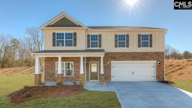 101 Crimson Queen Drive #0447, Blythewood, SC 29016 (MLS #457871) :: The Olivia Cooley Group at Keller Williams Realty