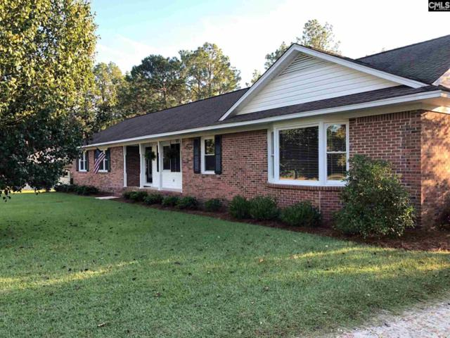 408 Bruce Drive, Camden, SC 29020 (MLS #457993) :: The Olivia Cooley Group at Keller Williams Realty