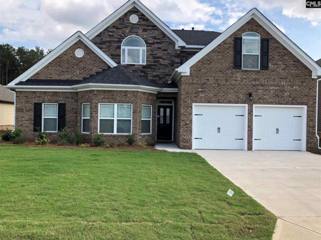 226 Lever Pass Road 33, Chapin, SC 29036 (MLS #458307) :: EXIT Real Estate Consultants
