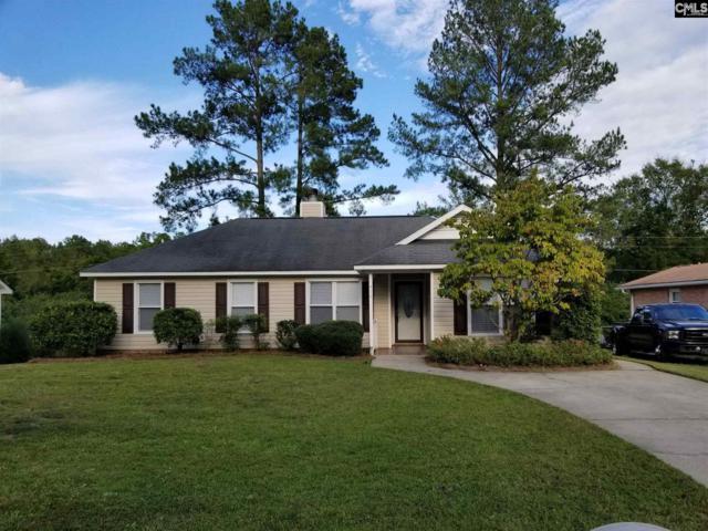 416 Dutch Drive Drive, Irmo, SC 29063 (MLS #458453) :: EXIT Real Estate Consultants