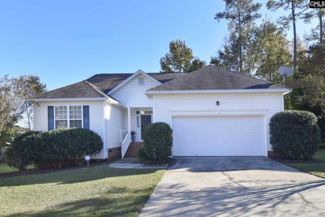 256 Oldtown Dr, Lexington, SC 29072 (MLS #458582) :: Home Advantage Realty, LLC
