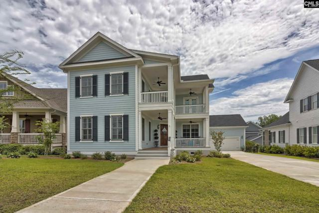 954 Battenkill Court, Lexington, SC 29072 (MLS #459046) :: The Olivia Cooley Group at Keller Williams Realty