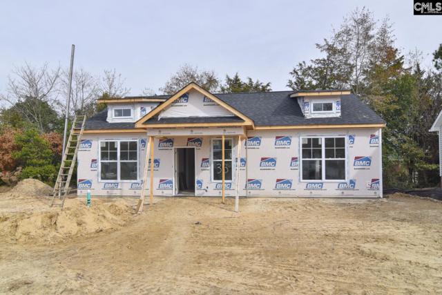 28 Furlong Downs Street, Lugoff, SC 29078 (MLS #459203) :: EXIT Real Estate Consultants