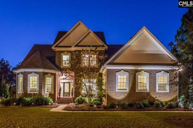 237 Peninsula Way Drive, Columbia, SC 29229 (MLS #459611) :: EXIT Real Estate Consultants