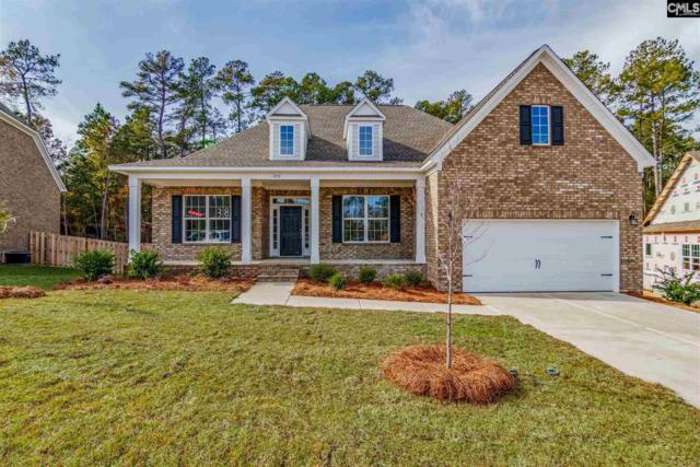 250 Cedar Hollow Lane, Irmo, SC 29063 (MLS #460195) :: EXIT Real Estate Consultants