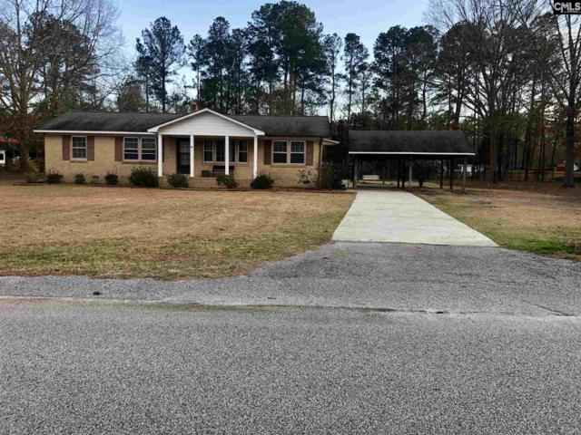 925 Hill Street, Lugoff, SC 29078 (MLS #460307) :: Home Advantage Realty, LLC