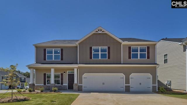 936 Trident Maple Lane, Chapin, SC 29036 (MLS #460331) :: EXIT Real Estate Consultants