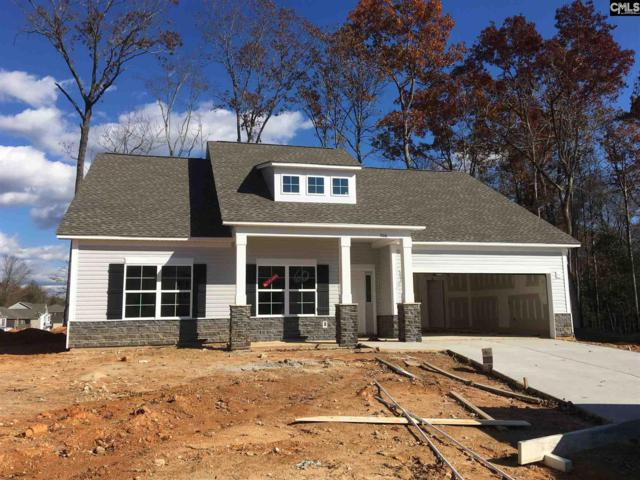 306 Saucer Way, Chapin, SC 29036 (MLS #460404) :: EXIT Real Estate Consultants