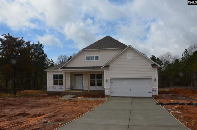 109 Limestone Rd., Chapin, SC 29036 (MLS #460429) :: EXIT Real Estate Consultants