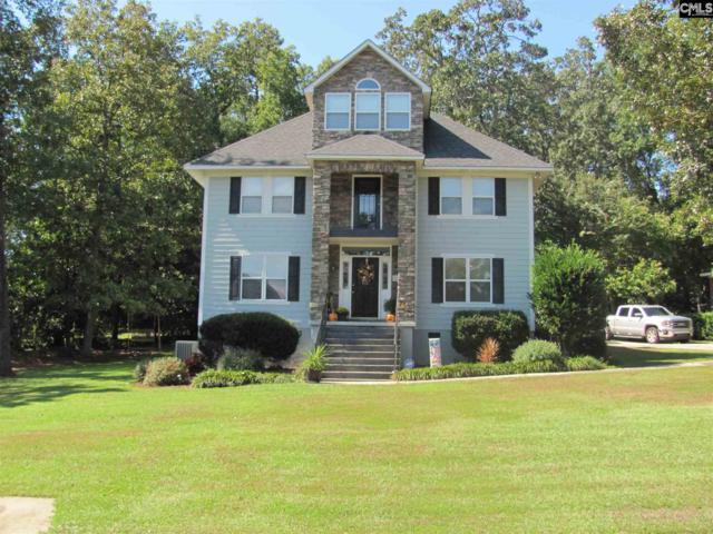 1025 Night Harbor Circle, Chapin, SC 29036 (MLS #460478) :: EXIT Real Estate Consultants