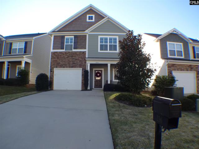 236 Jackstay Court, Chapin, SC 29036 (MLS #460570) :: EXIT Real Estate Consultants