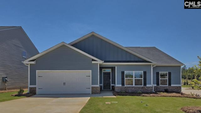 916 Trident Maple Lane, Chapin, SC 29036 (MLS #460879) :: EXIT Real Estate Consultants