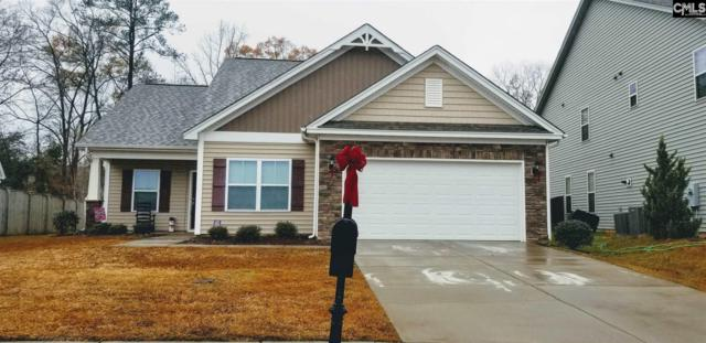 1009 Stradley Lane, Chapin, SC 29036 (MLS #461073) :: Home Advantage Realty, LLC