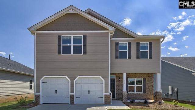 920 Trident Maple Lane, Chapin, SC 29036 (MLS #461237) :: EXIT Real Estate Consultants