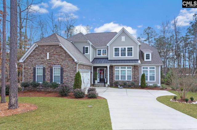 795 Harbor Vista Drive, Columbia, SC 29229 (MLS #462786) :: The Olivia Cooley Group at Keller Williams Realty