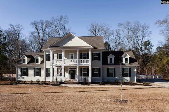 133 Limestone Road, Chapin, SC 29036 (MLS #462888) :: EXIT Real Estate Consultants