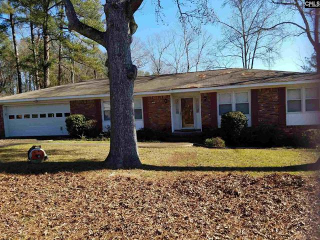 132 Spartan Drive, Columbia, SC 29212 (MLS #463071) :: EXIT Real Estate Consultants