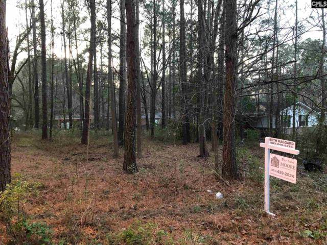 421 Lincolnshire N Drive, Columbia, SC 29203 (MLS #463107) :: EXIT Real Estate Consultants