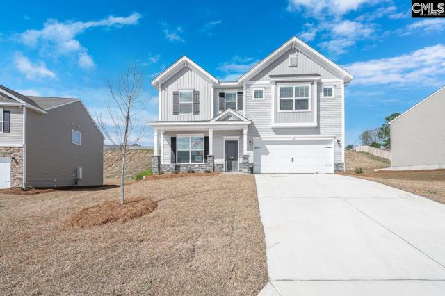 179 Sunny View Lane, Lexington, SC 29073 (MLS #463182) :: The Olivia Cooley Group at Keller Williams Realty