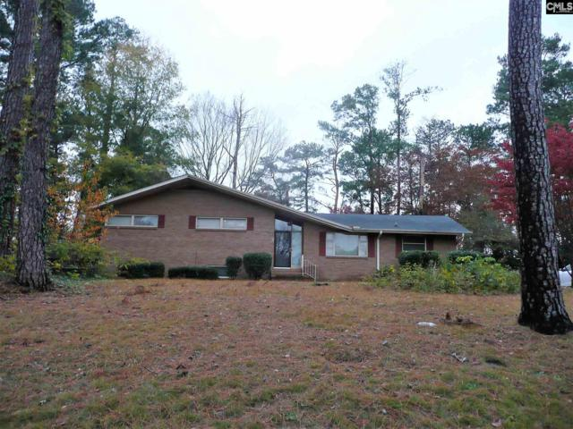 319 N Stonehedge Drive, Columbia, SC 29210 (MLS #463311) :: EXIT Real Estate Consultants