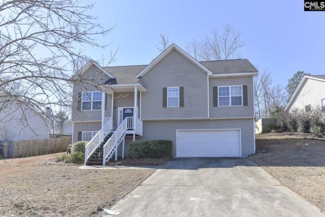 428 Gallatin Circle, Irmo, SC 29063 (MLS #463807) :: EXIT Real Estate Consultants
