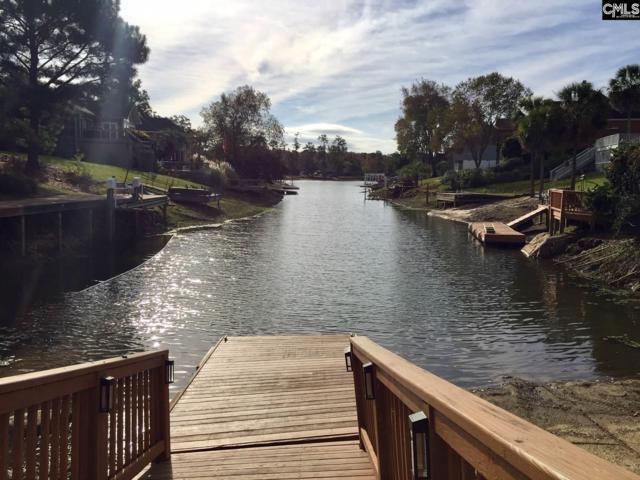 209 Headwater Circle, Irmo, SC 29063 (MLS #463975) :: Home Advantage Realty, LLC