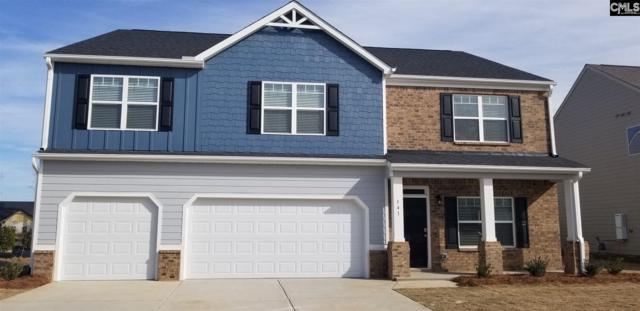 31 Middleknight Court, Blythewood, SC 29016 (MLS #464204) :: Home Advantage Realty, LLC
