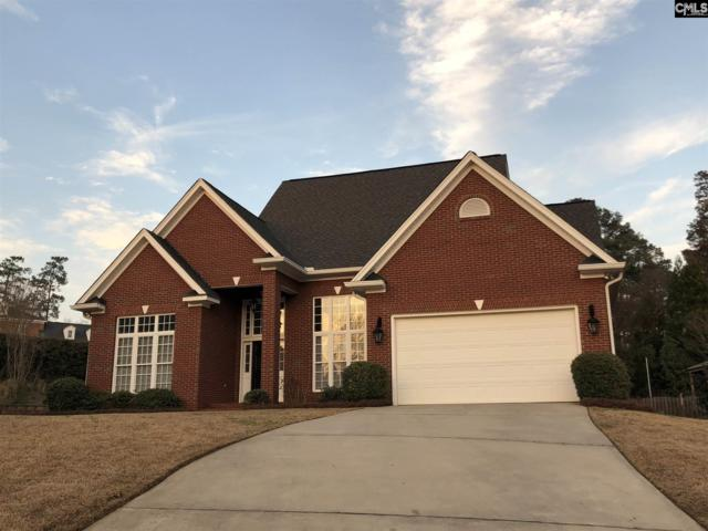 523 Old Wood Place, Columbia, SC 29212 (MLS #464434) :: EXIT Real Estate Consultants