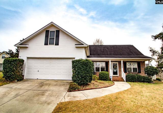 108 Huckleberry Ct, Irmo, SC 29063 (MLS #464582) :: EXIT Real Estate Consultants