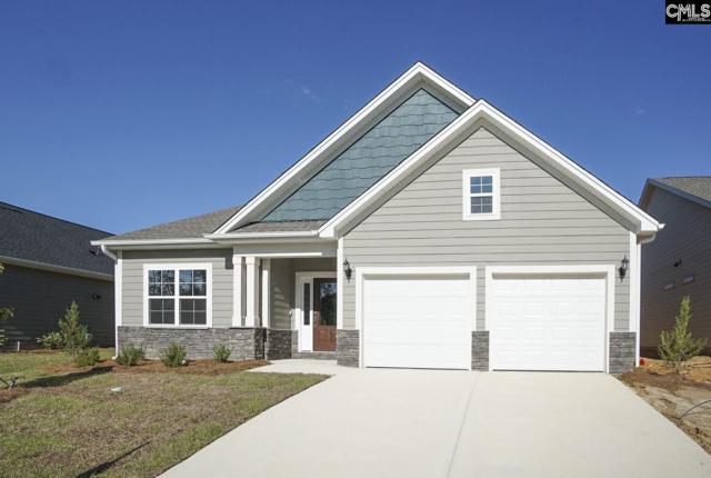 357 Amalfi Drive 89, Chapin, SC 29036 (MLS #464600) :: EXIT Real Estate Consultants