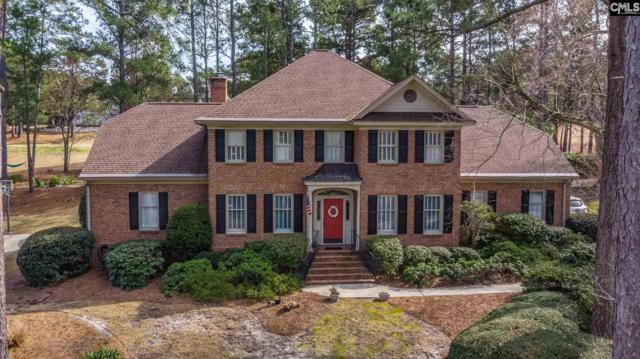 320 Running Fox Road, Columbia, SC 29223 (MLS #464622) :: Home Advantage Realty, LLC