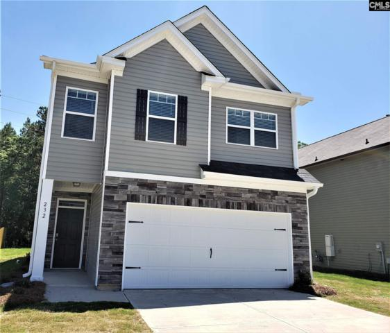 232 Bickley View Court, Chapin, SC 29036 (MLS #465008) :: EXIT Real Estate Consultants