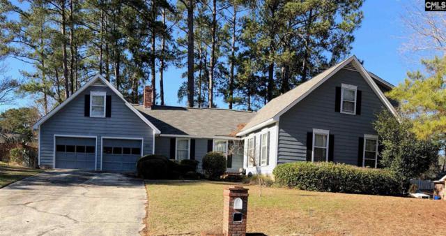 233 Brookspring Road, Columbia, SC 29223 (MLS #465150) :: Home Advantage Realty, LLC