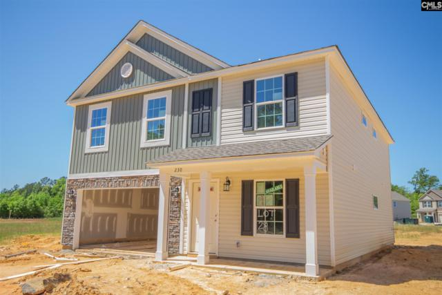 230 Elsoma Drive, Chapin, SC 29036 (MLS #465303) :: EXIT Real Estate Consultants