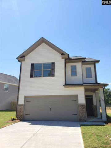 253 Bickley View Court, Chapin, SC 29036 (MLS #466086) :: EXIT Real Estate Consultants