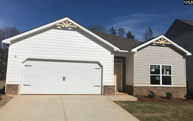 133 Village View Way, Lexington, SC 29072 (MLS #466152) :: The Olivia Cooley Group at Keller Williams Realty