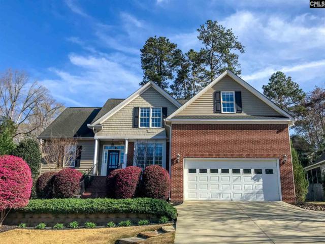 215 Serenity Drive, Lexington, SC 29072 (MLS #466157) :: EXIT Real Estate Consultants