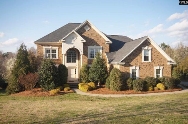 422 Caro Lane, Chapin, SC 29036 (MLS #466239) :: EXIT Real Estate Consultants