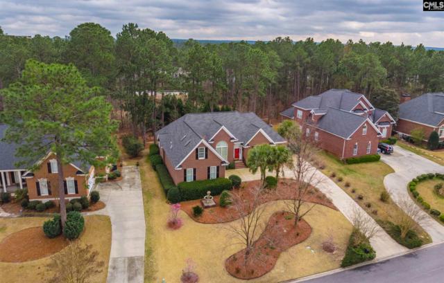 425 Aiken Hunt Circle, Columbia, SC 29223 (MLS #466323) :: EXIT Real Estate Consultants