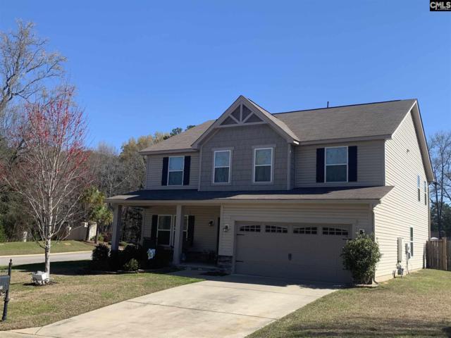 101 Stoney Creek Court, Lexington, SC 29072 (MLS #466332) :: EXIT Real Estate Consultants