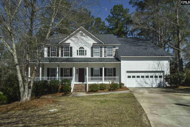 7 Hollenbeck Court, Irmo, SC 29063 (MLS #466629) :: EXIT Real Estate Consultants