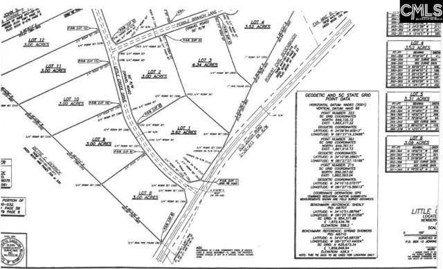 0 Little Creek Drive #2, Little Mountain, SC 29075 (MLS #466836) :: EXIT Real Estate Consultants