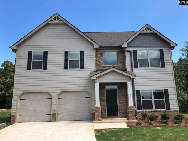 105 Village View Way, Lexington, SC 29072 (MLS #467091) :: The Olivia Cooley Group at Keller Williams Realty