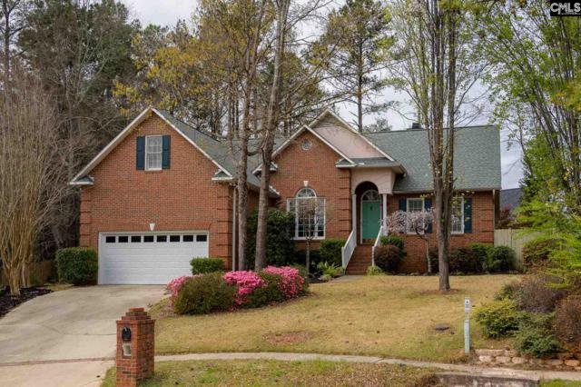 116 Lakeworth Drive, Columbia, SC 29212 (MLS #467185) :: Home Advantage Realty, LLC