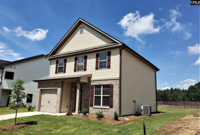 259 Bickley View Court, Chapin, SC 29036 (MLS #467541) :: EXIT Real Estate Consultants