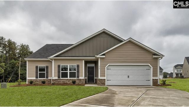 312 Sandy Shoals Court, Lexington, SC 29072 (MLS #467731) :: EXIT Real Estate Consultants