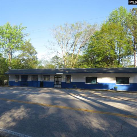 17707 Newberry Road, Blair, SC 29015 (MLS #468184) :: Loveless & Yarborough Real Estate