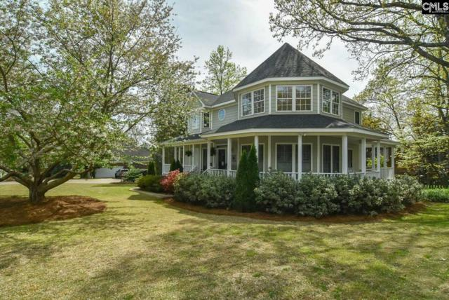 1018 Sunset Point Drive, Irmo, SC 29063 (MLS #468538) :: EXIT Real Estate Consultants