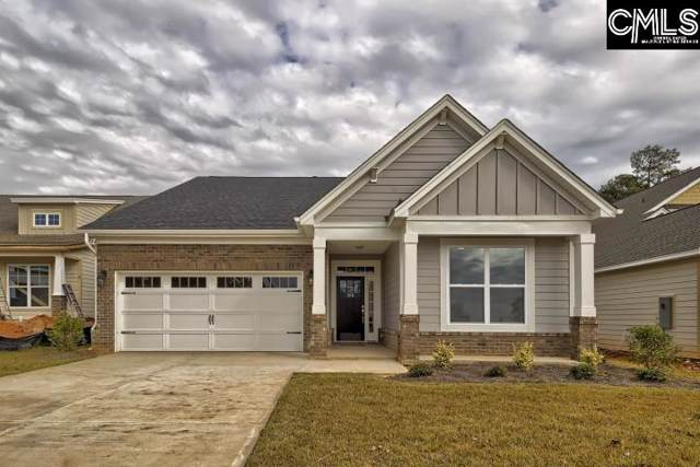 208 Bowyer Court, Chapin, SC 29054 (MLS #469082) :: EXIT Real Estate Consultants